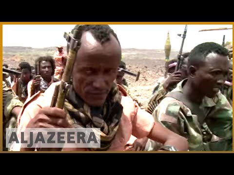 🇪🇷 Eritrea rebels struggle as government strengthens ties with Gulf Arab states thumbnail