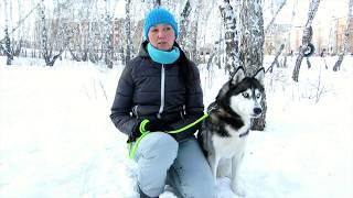 Отзыв о дрессировщике Ольге Дударевой (Foxis Pet)
