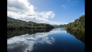 Experience the wilderness of the Gordon River - The new Gordon River Cruise