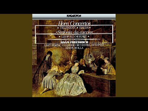 Concerto In D Major For Horn And Orchestra: II. Largo