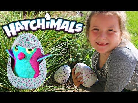 Hatchimals Eggs Found In The Wild! Our Hatchimals Eggs Finally Hatch Open! See What We Got!