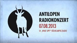 "Antilopen Gang @ ""What Up!?""-Radioshow (Part 2 - Konzert)"