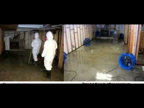 Water Damage Companies Shreveport, LA | Call (800) 790-6202