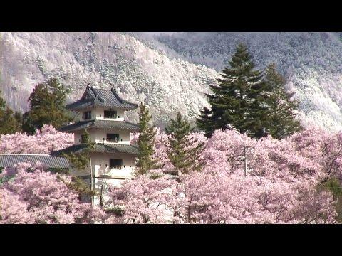 秘湯から眺める平成最後のさくらに歓喜する訪日外国人!