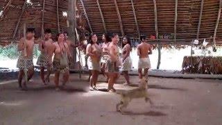 Video peruvian natives, BORAS, Iquitos Peru, [HD] 720p. download MP3, 3GP, MP4, WEBM, AVI, FLV Agustus 2018