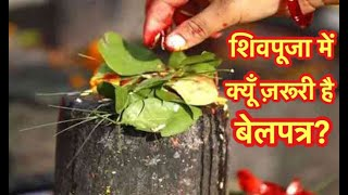Why Shiva Puja Is Incomplete Without Bilvapatra, How Bilva Tree Fulfills Dreams