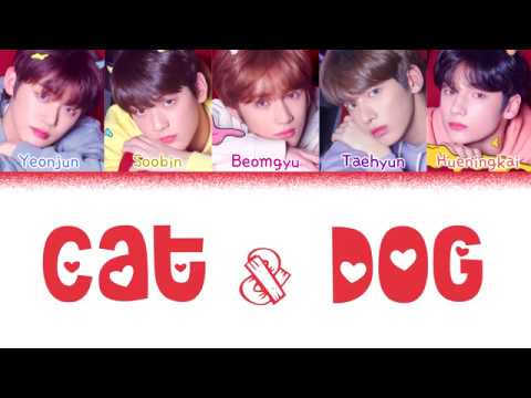 TXT (투모로우바이투게더) - 'CAT & DOG' (Color Coded Lyrics Eng/Rom/Han/가사)(CORRECTED IN COMMENTS)