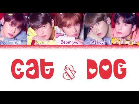 TXT (투모로우바이투게더) - 'CAT & DOG' (Color Coded Lyrics Eng/Rom/Han/가사)