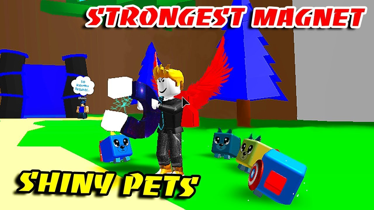 I BOUGHT ALL REBIRTH MAGNET & MAKE ALL SHINY SUPER PETS In
