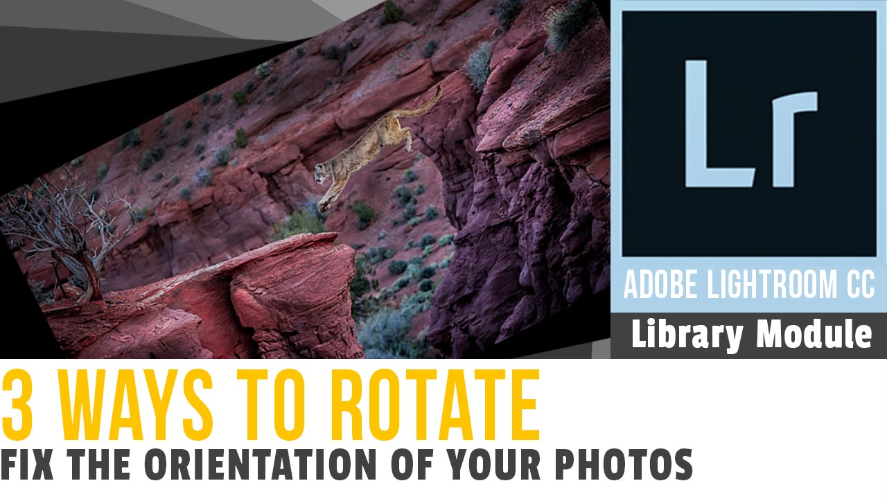 Adobe lightroom cc library module 3 ways how to rotate your photo adobe lightroom cc library module 3 ways how to rotate your photo in lightroom ccuart Images