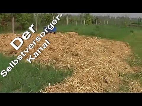 kartoffelanbau-unter-stroh-mulch