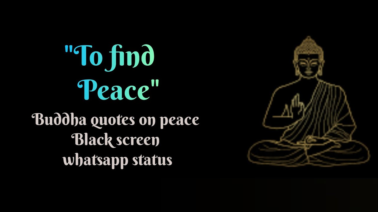Download Buddha quotes on peace    Buddha quotes for life #shorts #whatsappstatus #status #cozythoughts