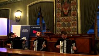 Crazy Accordion Trio - Ajde Jano ( Live at the BIHAPI )