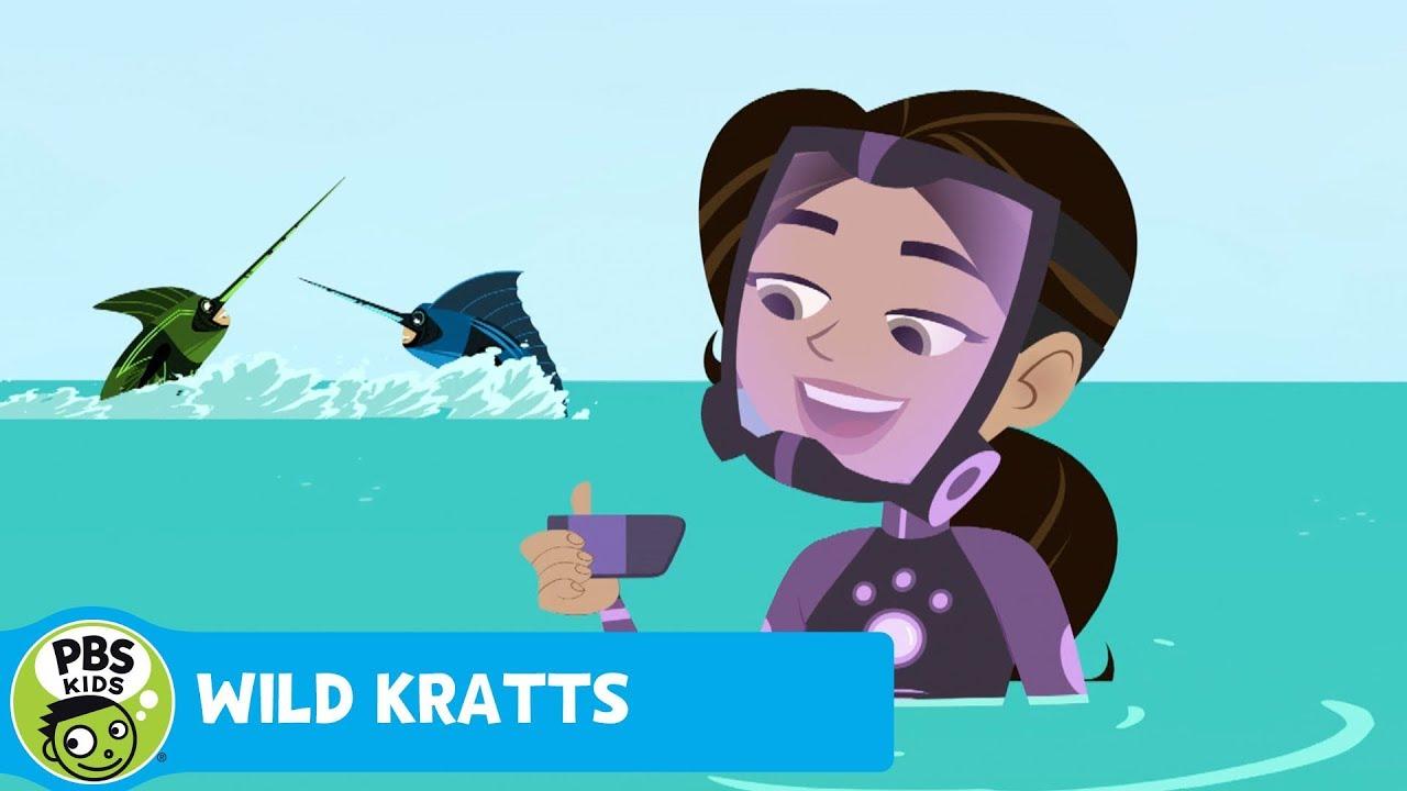WILD KRATTS Billfish Powers PBS KIDS YouTube