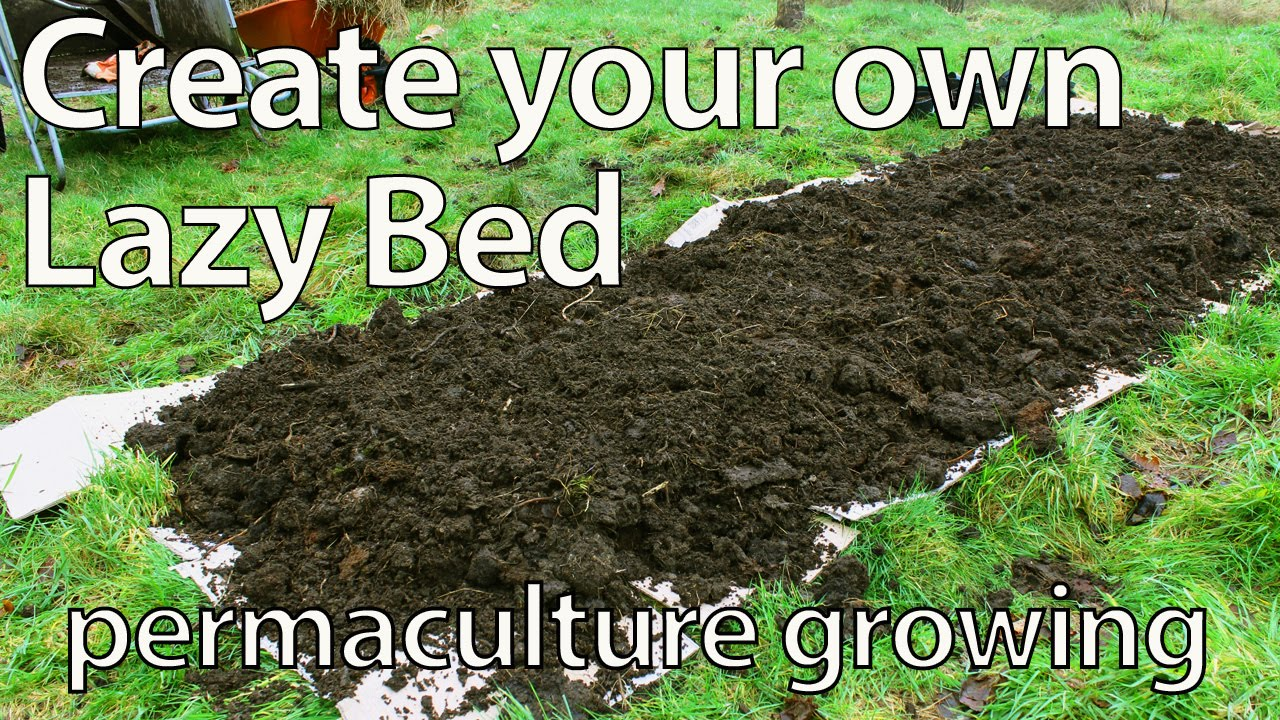 No dig vegetable gardens with raised garden beds - Build A Lazy Bed For Growing Food No Dig Permaculture Raised Bed Youtube