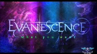 Evanescence - What You Want Vs Sins in Vain - Borderline / [HDK] Edition