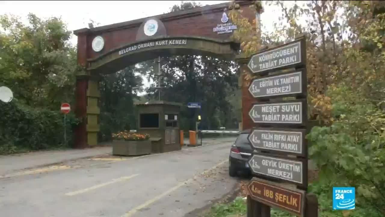 فرانس 24:Khashoggi disappearance: Turkish authorities search Istanbul forest
