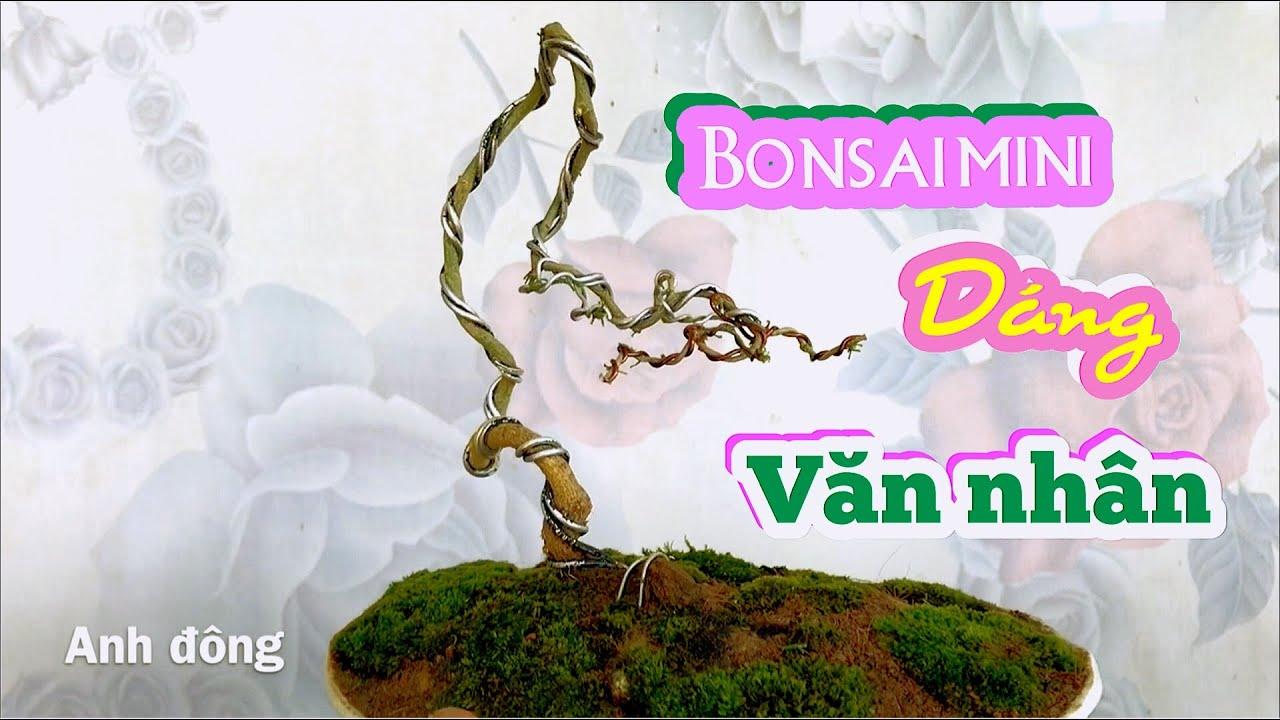 Bonsai Mini Dang Văn Nhan