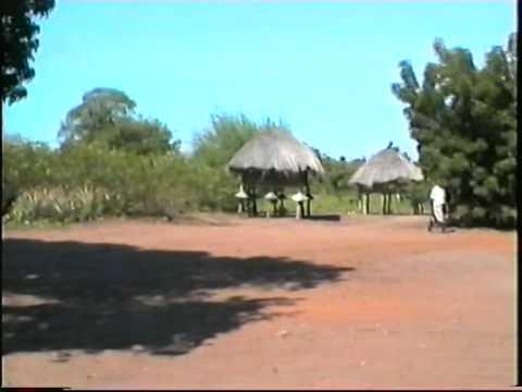 1999 1 11,6  Mozambique agriculture