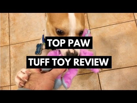 top-paw-tuff-toy-review---tough-dog-toys-tested-by-moriaty