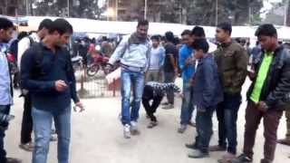 Funny Games With Public at Pouro Uddan, Tangail