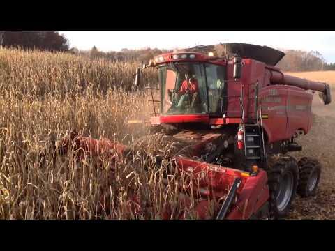 Triple Brook Farms 2013 Harvest