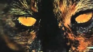 Torture Garden (Freddie Francis, Reino Unido, 1967) - Trailer