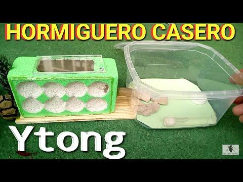 Hormiguero casero Ytong cómo hacer hormiguero casero fácil ytong - MUNDO HORMIGAS