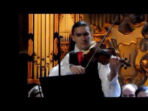 Johann Sebastian Bach - Adagio (Sergey Malov & Georgian Sinfonietta)