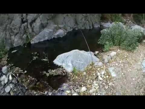 Secret California Creek Trout Fishing