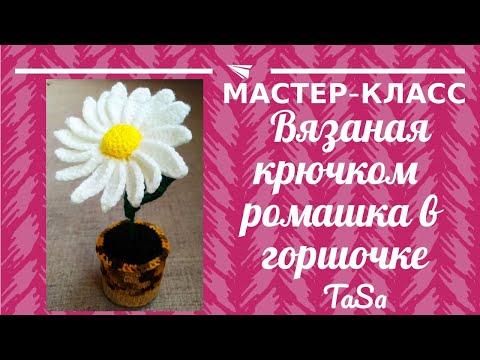 Вязаная крючком ромашка в горшке. Цветы крючком. Вязаные цветы в горшке.