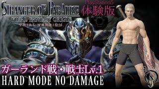 【FFオリジン・Lv.1 ボス戦】FF ORIGIN・BOSS カオスとなる者(戦士/黒魔道士 Lv.1 HARD NO DAMAGE) STRANGER OF PARADISE DEMO