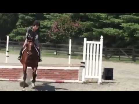Amber Gold Jump