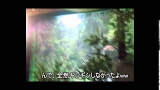 那須旅行に行ってきた。 やはり...子連れが多いこと...SLランドの汽車の...