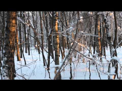 Клип White Hot Ice - Сказочный лес