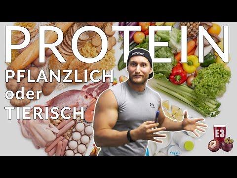 Die WAHRHEIT über PROTEIN - Wie viel Protein braucht man für Muskelaufbau wirklich?! // E3
