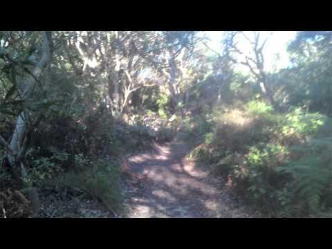 enviro doco (botany bay national park)