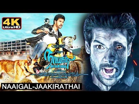 naaigal jaakirathai || tamil full movie - 4k || new tamil movie new release