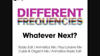 Whatever Next? (Animistics Radio Edit) by Different Frequencies