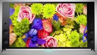 Sony X93C Series - KD55X9305CBU KD65X9305CBU 4K UHD X-Reality PRO 3D Television
