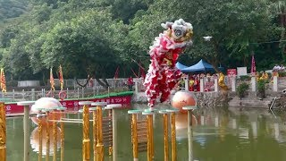 International lion dance contest held in S China
