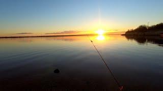Ночная рыбалка СЛАБОНЕРВНЫМ НЕ СМОТРЕТЬ
