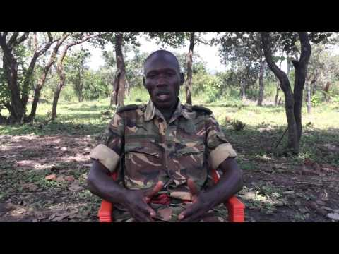 Jean Claude Mambo: Well-armed Poachers