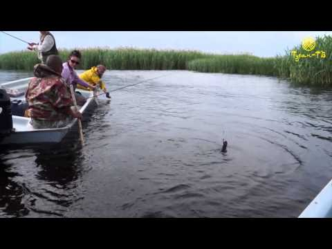 астрахань кигач рыбалка