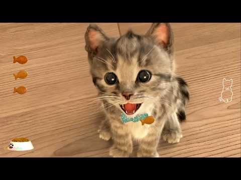 Baby Fun Little Kitten - Play With My Favorite Cat - Funny Little Kitten Baby Games