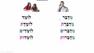 Video Lesson13
