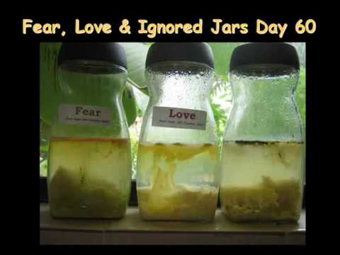the-boiled-rice-in-a-jar-experiment