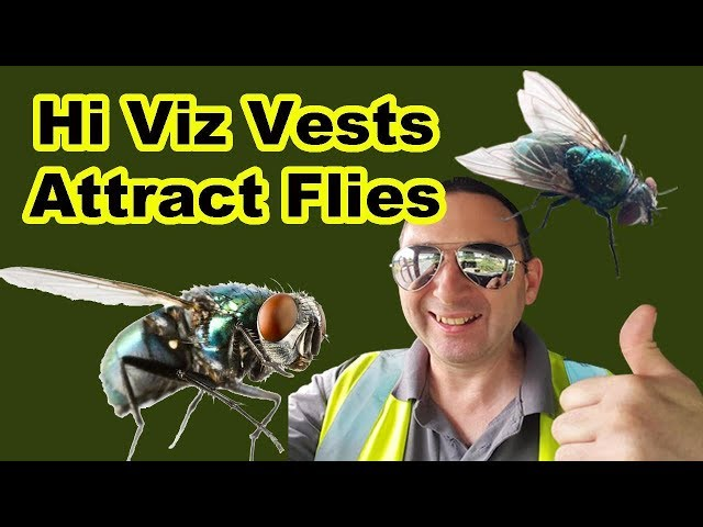 Hi Viz Vests attract Flies British Trucking Hi Vis Clothing