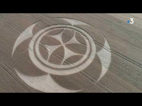 Un Mystérieux Motif Géant (crop Circle) Dans Un Champ De Vimy Attire De Nombreux Curieux