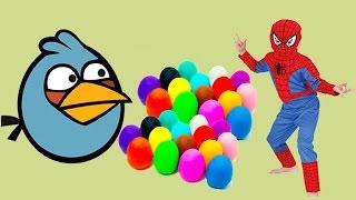 Kinder Surprise Eggs DC Transformers AngryBirds Shopkins DisneyFrozen Cars Marvel Toys Collector